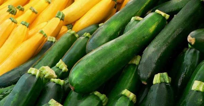 توزیع کود های کشاورزی برای420 هکتار کدو در گلستان
