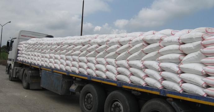 توزیع بیش از 7300 تن کود اوره در فروردین ماه در مازندران