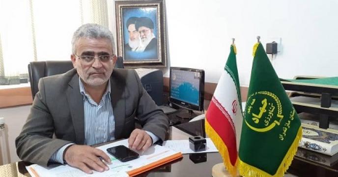 فعالیت 23 واحد تولید گلخانه ای در نکاء استان مازندران