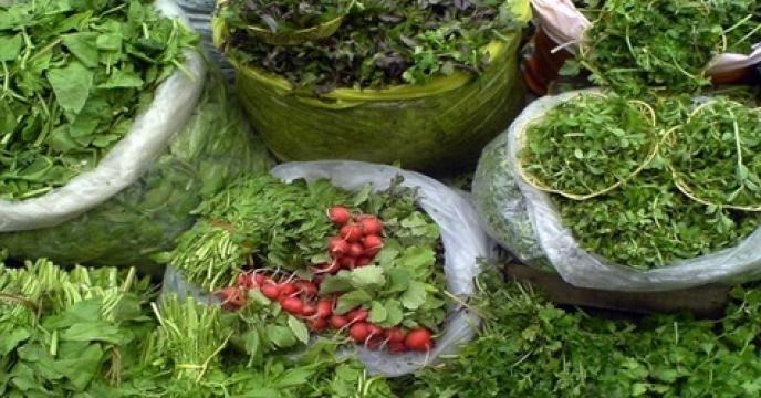 تأمین کود برای سبزی کاری در شهرستان های  مازندران