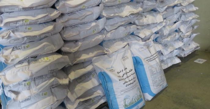 توزیع صد در صدی بذر شلتوک برنج در استان مازندران