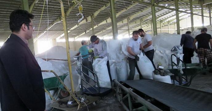 عملیات کیسه گیری کود اوره فله در شرکت خدمات حمایتی کشاورزی استان همدان در حال انجام است
