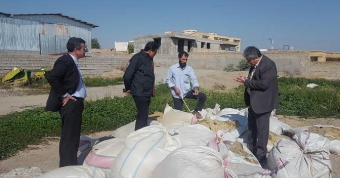 بازدید مدیر محترم امور فنی و بهبود کیفیت بذر و نهال از استان کرمان
