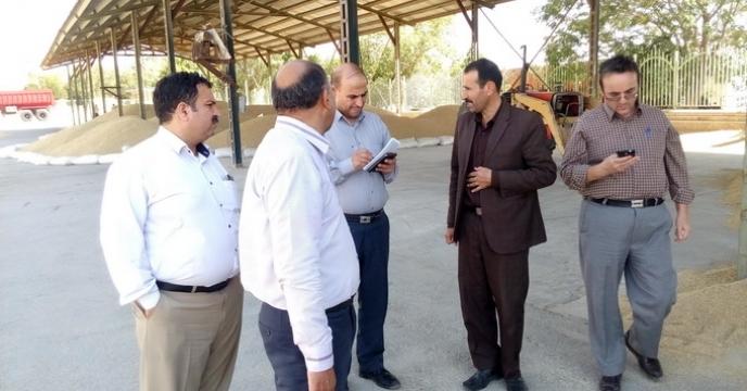 گزارش بازدید از فرآیند تولید و تکثیر بذور درشرکت خدمات حمایتی کشاورزی استان چهارمحال و بختیاری توسط آقای مهندس یوسفی