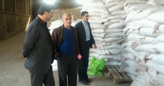 بازدید دوره ای سرپرست شرکت خدمات حمایتی کشاورزی استان از  انبار عاملین فروش بذر گندم