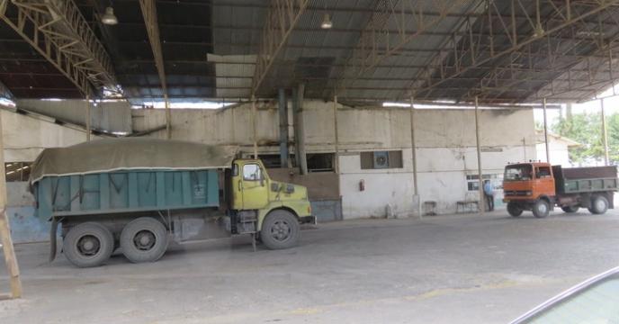 آغاز فرآیند بوجاری بذر شلتوک برنج در استان مازندران