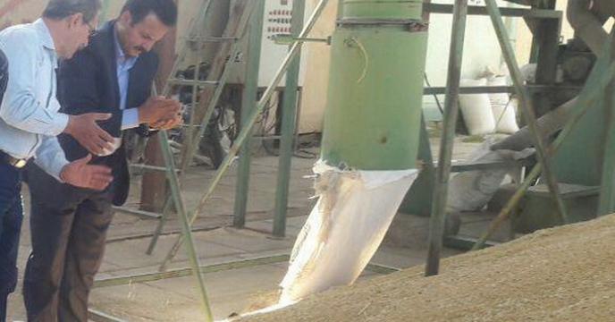 عقد قرارداد و اجاره سامانه دستگاه بوجاری شرکت خدمات حمایتی کشاورزی استان قزوین