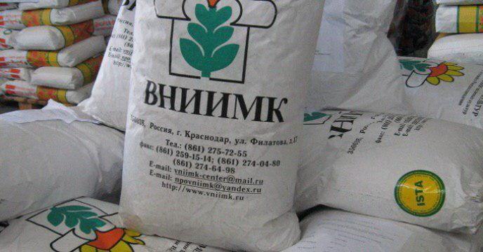 ارسال بذر آفتابگردان موجود در انبارشرکت خدمات حمایتی کشاورزی استان فارس به خراسان شمالی