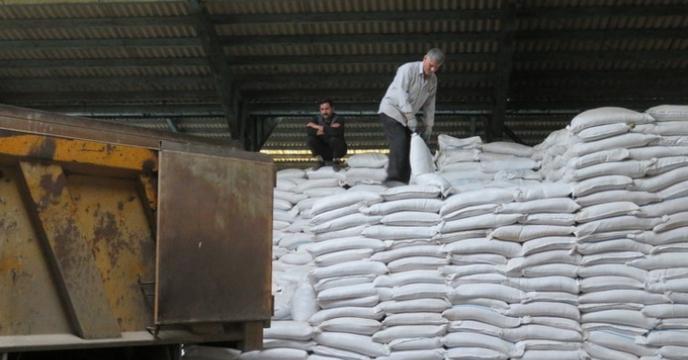 توزیع بیش از 31 هزار تن انواع کودهای کشاورزی در استان گیلان