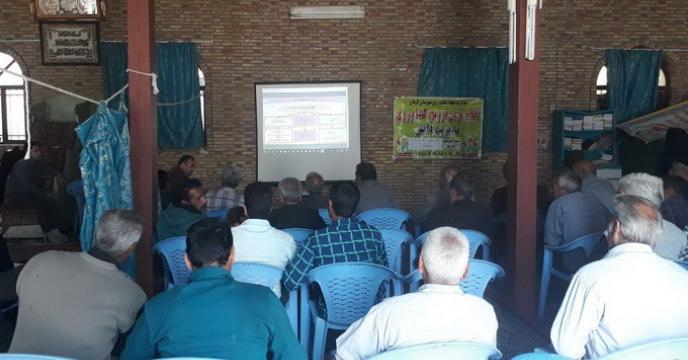 برگزاری کلاس آشنایی با آفت خطرناک مگس مدیترانه یی درمنطقه شهداد  استان کرمان