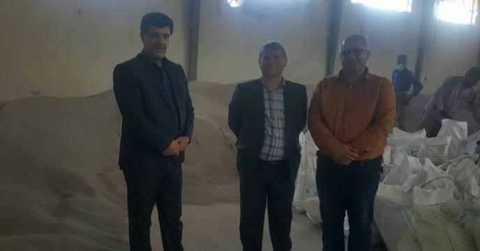 بازدید مدیر تعاون روستایی استان گلستان از سایت کیسه گیری  کود فله در انبار گنبد
