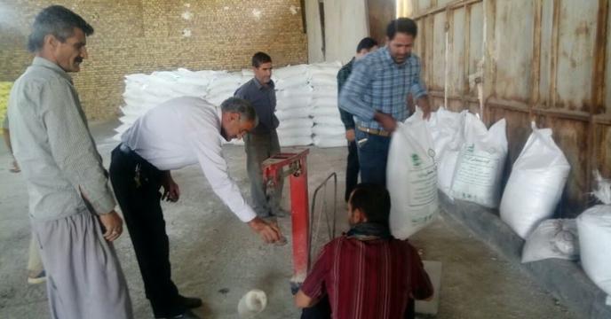 بازدید از نحوه توزین و کیسه گیری کود فله کارگزاران استان مرکزی