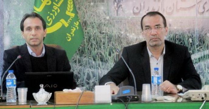 برگزاری نشست کارگروه ارزیابی عملکرد در استان مازندران