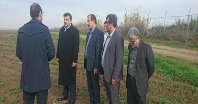 تاکید استاندار مازندران بر تامین و توزیع نهاده های کشاورزی