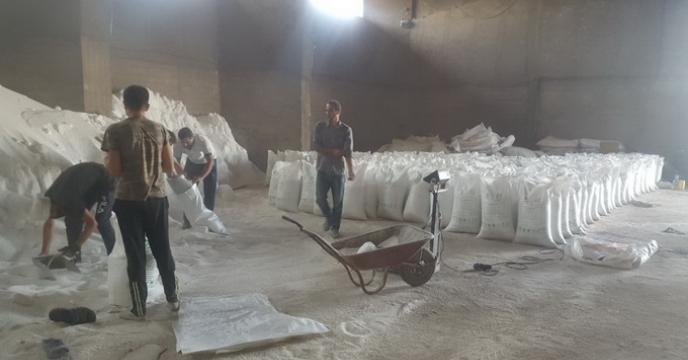 آغاز عملیات کیسه گیری کود اوره فله در استان قزوین