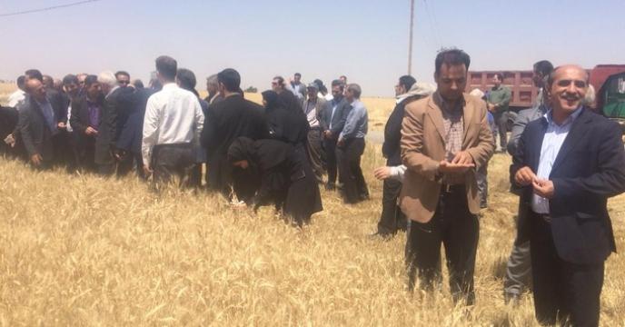 مراسم روز مزرعه در استان البرز