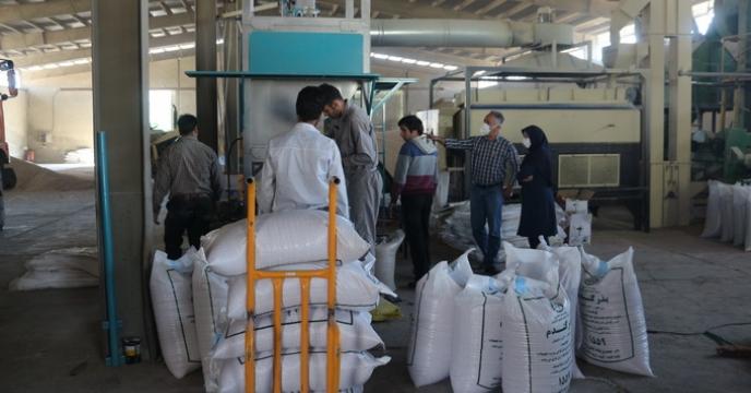 عملکرد شرکت خدمات حمایتی کشاورزی استان تهران در زمینه توزیع بذور اصلاح شده