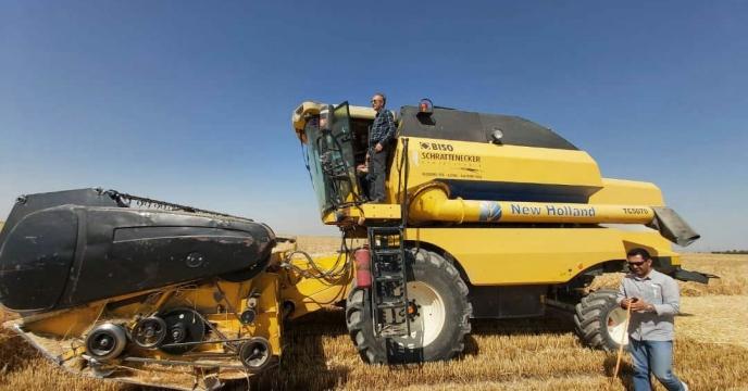 اجرای عملیات کیل گیری جو آبی در مزارع کشاورزی شهرستان البرز
