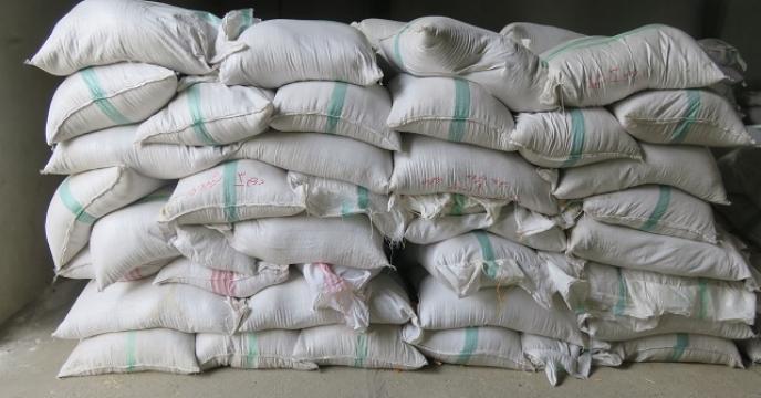 توزیع 3720 کیلوگرم بذر برنج گرمه در استان مازندران