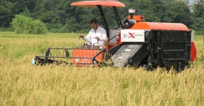 20 تن کود کشاورزی برای کشت مجدد  برنج در نکاء استان مازندران