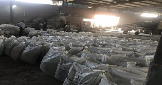 تأمین و توزیع 29 تن  کود اوره  بطور مستقیم در آمل