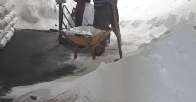 توزیع 52 تن کود اوره به صورت تعاونی در میاندورود