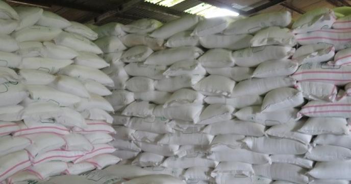 توزیع 225 تن کود اوره در سوادکوه شمالی
