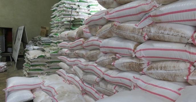 تامین کود برای تولید 800 کیلوگرم کنجد  در قائم شهر