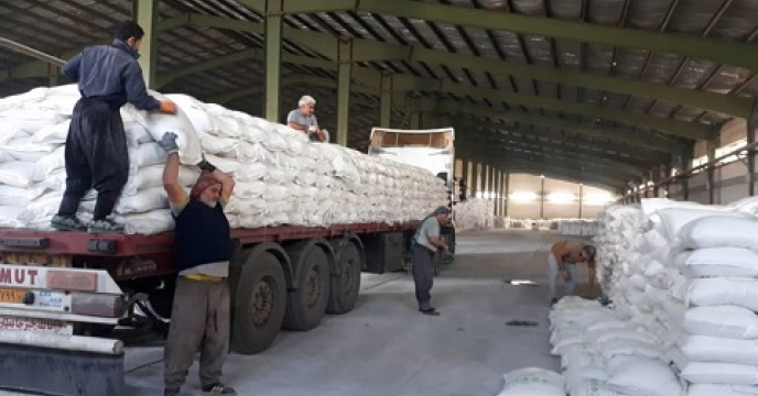 تأمین کود برای تولید  500 هزار تن مرکبات در مرکز مازندران