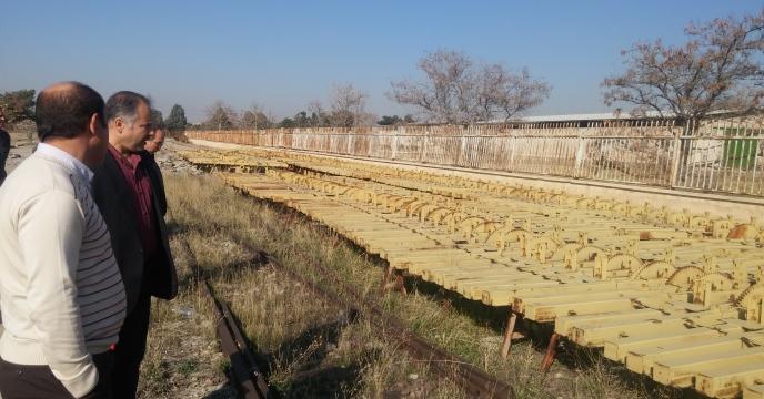 بیمه مزارع گندم در استان البرز