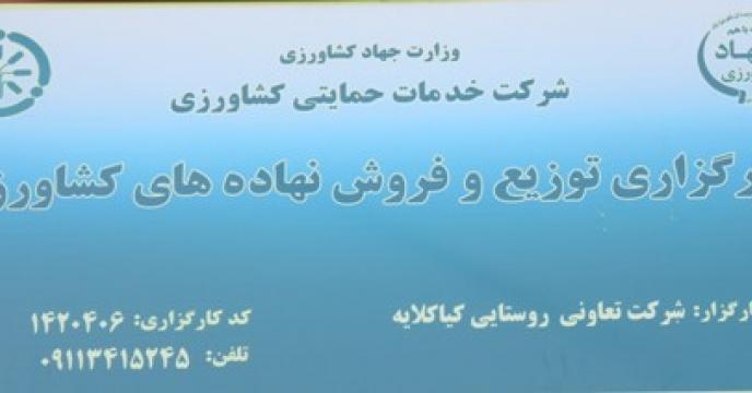 نظارت بر کارگزاری های  توزیع نهاده ها در استان گیلان
