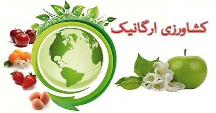 تخفیف 20 درصدی حق بیمه برای تولیدکنندگان محصولات گواهی شده و ارگانیک در آذربایجان غربی