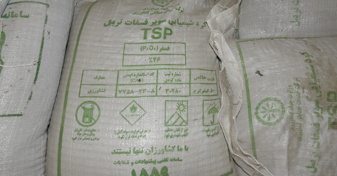 ذخیره 150 درصدی کودهای فسفاته در استان البرز