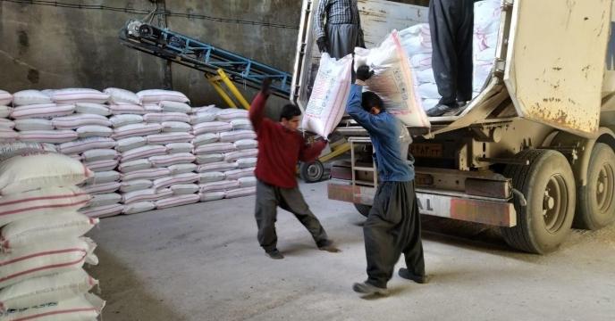 تامین و حمل  25 تن کود اوره به   شهرستان بانه
