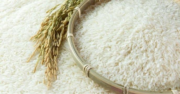 تولید سالانه بیش از 66هزار برنج سفید در بابلسر مازندران