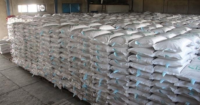 نمونه برداری59975 کیلوگرم از بذرهای برنج پروسس شده توسط نماینده موسسه تحقیقات اصلاح بذر و نهال