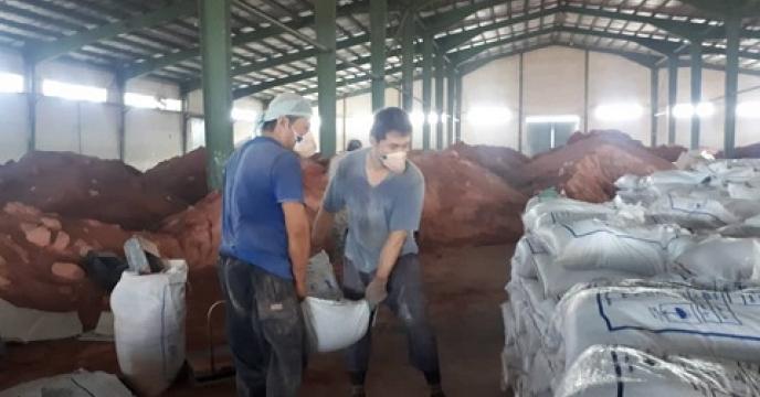 تامین کود برای 100 هکتار مزارع سویا در قائم شهر