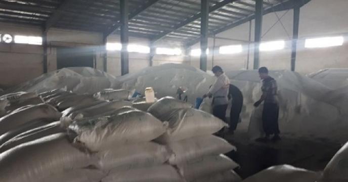 تامین و توزیع 6062 تن کود اوره در بابل استان مازندران