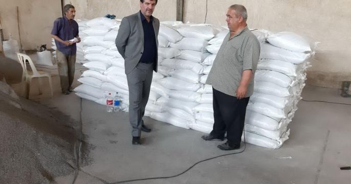بازدید  مدیر شرکت خدمات حمایتی کشاورزی استان گلستان از  انبار چای بویی گنبد