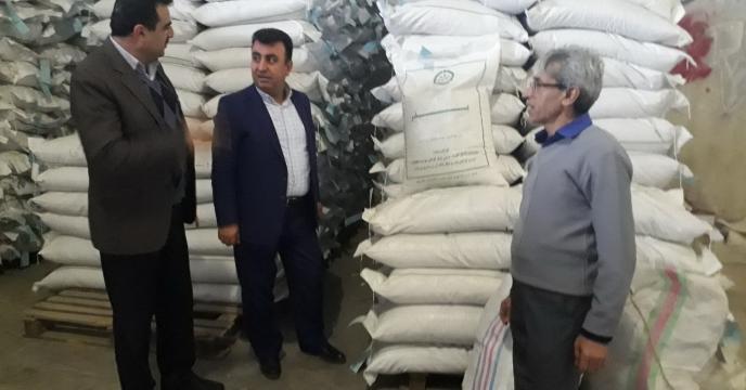 توزیع بذر برنج با بهترین کیفیت در مازندران