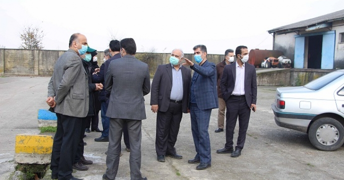 بازدید رئیس سازمان جهاد کشاورزی از سایت بذر شرکت خدمات حمایتی کشاورزی