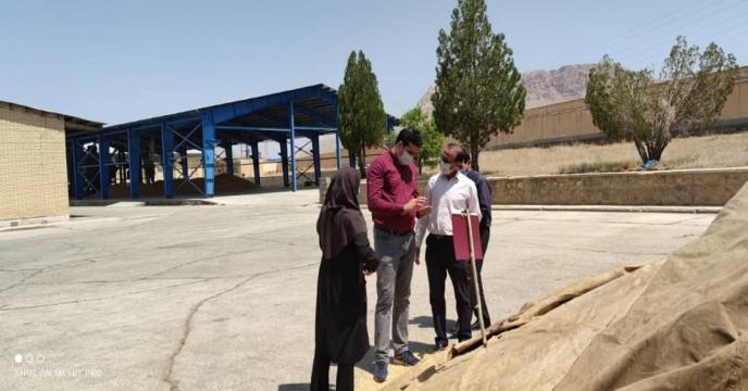 بازدید مدیر فنی و بهبود کیفیت بذر ونهال از مزارع بذر گندم استان چهارمحال و بختیاری