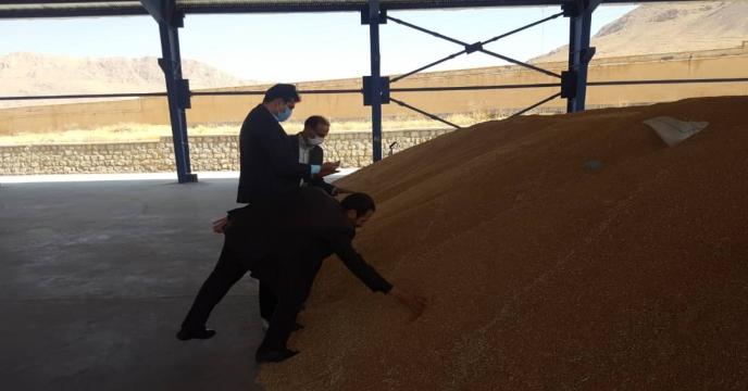 بازدید مدیر فنی و بهبود کیفیت بذر ونهال از انبار بذر استان چهار محال و بختیاری