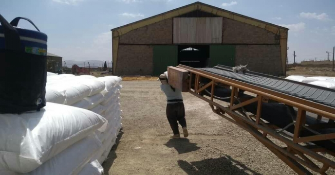 حمل و ارسال مقدار 80 تن کود اوره به شهرستان کمیجان – مهر ماه 1399