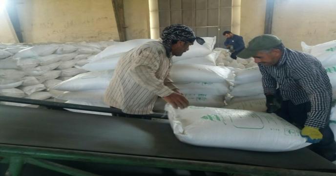توزیع کود اوره از طریق شرکتهای تعاونی روستایی در استان مرکزی