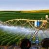 راهکارهای افزایش بهره وری در بخش کشاورزی
