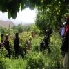 معرفی گردشگری کشاورزی