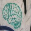 7 اقدامی که براساس تحقیقات علمی باعث افزایش بهره هوشی شما خواهد شد
