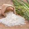 آشنائی با برنج های رنگی