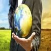 اصول توسعه برند در سطح جهانی